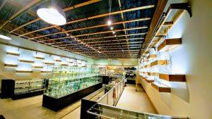 NVS Glassworks, 5210 SE Woodstock Blvd #102, Portland, OR 97206, United States